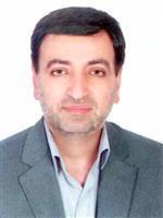 مردانی نوکنده، محمد حسین