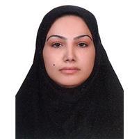 حسینی پور، محبوبه